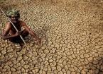 Hindistan'da Sıcak Hava Nedeniyle 184 Kişi Öldü